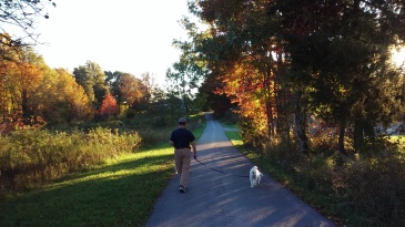 Steve, best friend and husband, walks ahead toward home with the pooches.